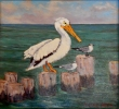 Pelican and Friends by Flint Reed